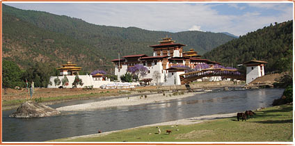 Punakha Dzong with new bridge, 10. May 2008
